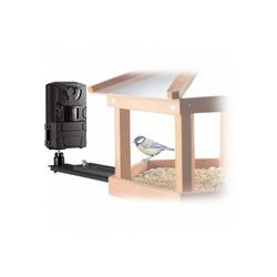 BRESSER Vogelkamera Vogel/Kleintier-Kamera SFC-1 mit Bewegungssensor