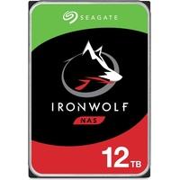 Seagate IronWolf 12TB (ST12000VN0008)