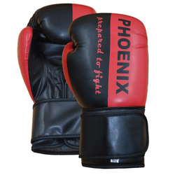PX Boxhandschuh
