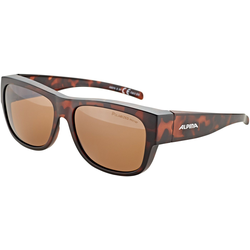 Alpina Sports Sonnenbrille Overview II P
