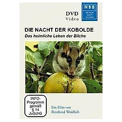 Die Nacht der Kobolde - DVD  Filme