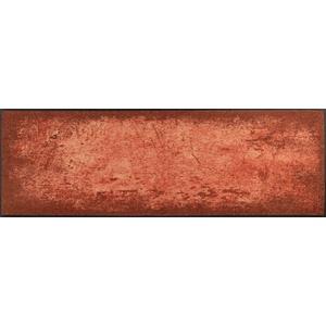 wash+dry 038460 Fussmatte, 100& Polyamid, 60 x 180 cm