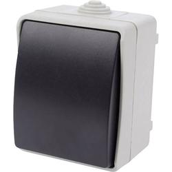 EWSW Aufputz-Schalter