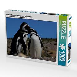 Magellan Pinguine, Patagonien, Argentinien Lege-Größe 64 x 48 cm Foto-Puzzle Bild von Ute Köhler Puzzle