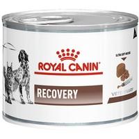 Royal Canin Recovery Canine & Feline 195 g