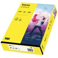 Inapa tecno colors A4 120g/qm VE=250 Blatt gelb
