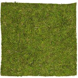 Echte Moosmatte, 35 x 35 cm