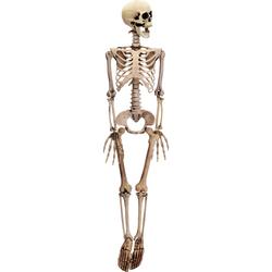 Gruseliges Skelett beweglich 90 cm - Kunststoff Knochen Skelett Grusel Halloween Deko