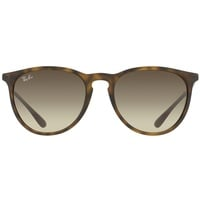 Ray Ban Erika RB4171 865/13 54-18 havana-gunmetal/brown gradient