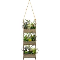 Künstliche Zimmerpflanze Holzdekoleiter mit Sukkulenten Sukkulente, Creativ green, Höhe 60 cm