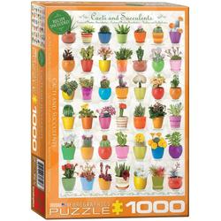 empireposter Puzzle Wundervolle Natur - Kakteen und Sukkulenten - 1000 Teile Puzzle im Format 68x48 cm, 1000 Puzzleteile
