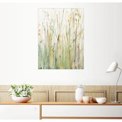 Posterlounge Wandbild, Frühlingsgräser I 60 cm x 80 cm
