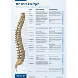 Die Dorn-Therapie. Poster 594 x 84 cm