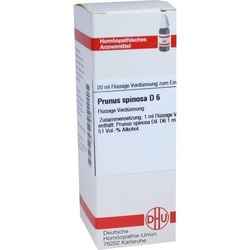 PRUNUS SPINOSA D 6 Dilution 20 ml