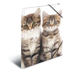 HERMA 7138 3x Sammelmappe A4 PP - Katzen