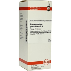 HARPAGOPHYTUM PROC D 6