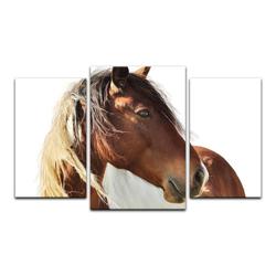 Bilderdepot24 Leinwandbild, Leinwandbild - Pferd - Portrait 100 cm x 60 cm