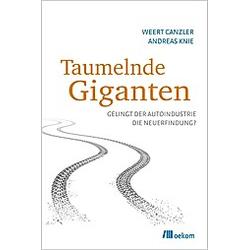 Taumelnde Giganten. Andreas Knie  Weert Canzler  - Buch