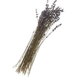 Kunstpflanze Lavendel, VBS, 45 cm lang