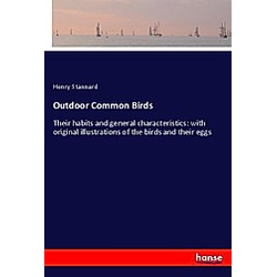 Outdoor Common Birds