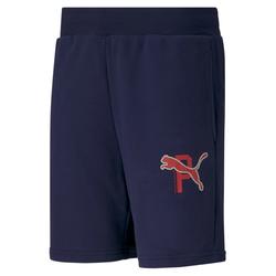 PUMA Herren Shorts navy
