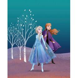 Komar Poster Frozen Sisters, Disney 40 cm x 50 cm