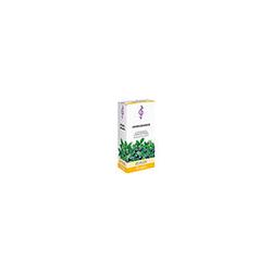 HEIDELBEEREN TEE 175 g