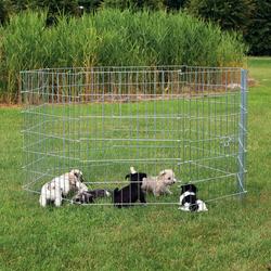 Welpengehege Freigehege für Welpen, Welpenauslauf, 8 Gitter, Element 61 × 91 cm