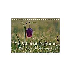 Die Schachbrettblume (Tischkalender 2021 DIN A5 quer) - Kalender