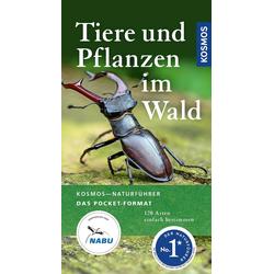 Tiere und Pflanzen im Wald als Buch von Ute Wilhelmsen