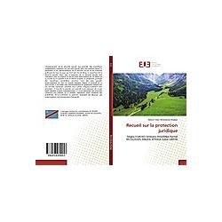 Recueil sur la protection juridique. Marius-Trésor Mimolokwa Madigo  - Buch