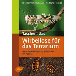 Taschenatlas Wirbellose für das Terrarium als Buch von Wolfgang Schmidt/ Friedrich-Wilhelm Henkel