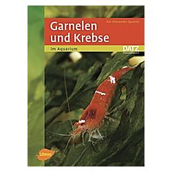 Garnelen und Krebse im Aquarium. Kai A. Quante  - Buch