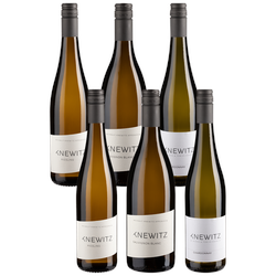 6er-Probierpaket Knewitz - Knewitz - Weinpakete