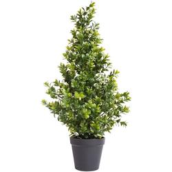 Künstliche Zimmerpflanze Buchsbaum im Topf Buchs, Botanic-Haus, Höhe 60 cm