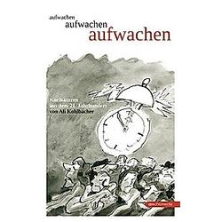 aufwachen. Ali Kohlbacher  - Buch