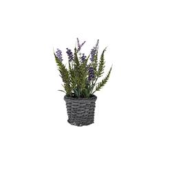 Lavendel im Korb ¦ lila/violett ¦ Kunststoff, Rattan