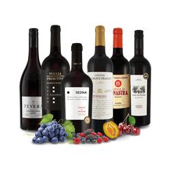 Probierpaket 6 Flaschen Trend-Rotweine der Welt