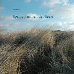 Springbrunnen der Seele als Buch von Dorit Reuter