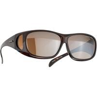 Alpina Sunglasses Overview schwarz/braun 2021 Brillen