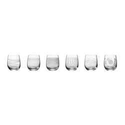 LEONARDO Glas CASELLA 6er-Set 300 ml, Kristallglas