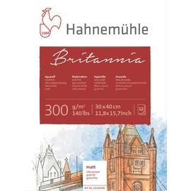 HAHNEMUEHLE Hahnemühle Aquarellblock 10628981