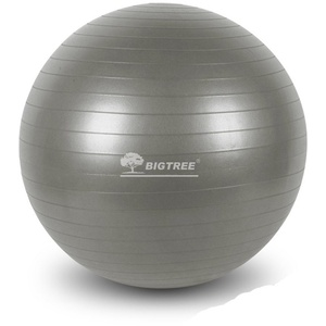 BIGTREE Yogaball Gymnastikball für Fitness grau Ø 65 cm