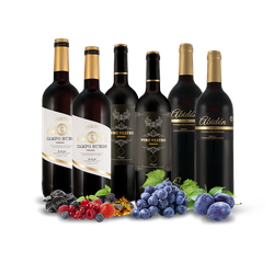 Spanische Crianza-Auswahl mit 6 Flaschen