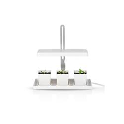 MAXXMEE Pflanzenlampe, 3 Töpfe weiß