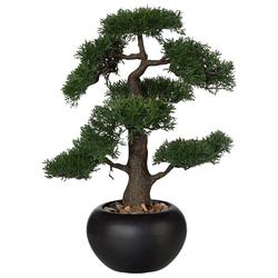 Kunstbonsai Bonsai Bonsai, Creativ green, Höhe 48 cm