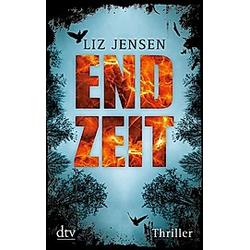 Endzeit. Liz Jensen  - Buch