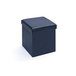 ebuy24 Aufbewahrungsbox Sanne Aufbewahrungsbox Hocker, faltbar mit Deckel, schwarz 38 cm x 38 cm x 38 cm