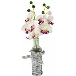 Kunstpflanze Orchideen in Weideglasvase Orchidee, I.GE.A., Höhe 42 cm