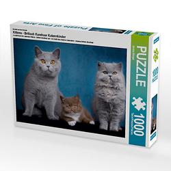 Kittens - Britisch Kurzhaar Katzenkinder Lege-Größe 64 x 48 cm Foto-Puzzle Bild von Janina Bürger Puzzle
